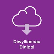 Diwylliant Digidol