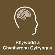 Rhywedd a Chynhyrchu Cyfryngau